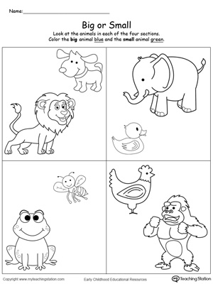 Worksheets Big And Little Worksheets comparing animals sizes big and small myteachingstation com downloadfree worksheet