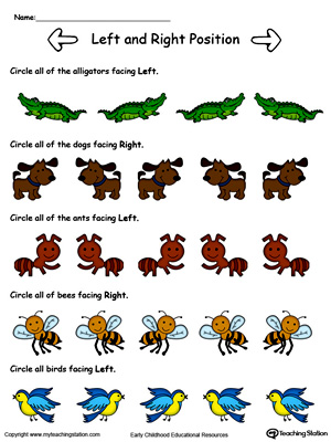Left Right Direction Animals Color on positional language worksheet kindergarten