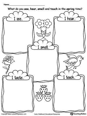 math worksheet : the five senses in the spring time  myteachingstation  : Five Senses Kindergarten Worksheets
