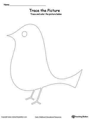Practice fine motor skills with this bird picture tracing printable worksheet.