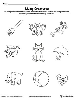Kindergarten plants and animals printable worksheets for Living and nonliving things coloring pages