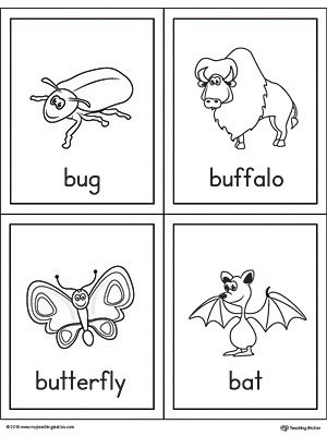 Letter B Words and Pictures Printable Cards: Bug, Buffalo, Butterfly, Bat