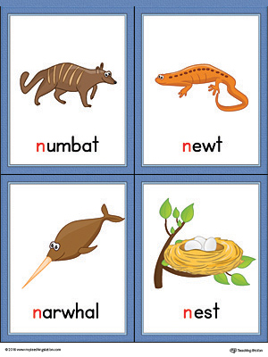 Letter N Words and Pictures Printable Cards: Numbat, Newt, Narwhal, Nest (Color)