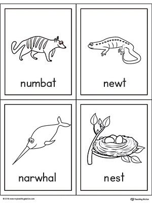 Letter N Words and Pictures Printable Cards: Numbat, Newt, Narwhal, Nest