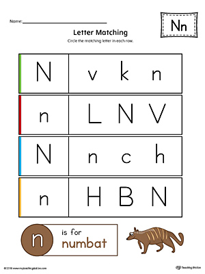 Letter N Uppercase and Lowercase Matching Worksheet (Color)